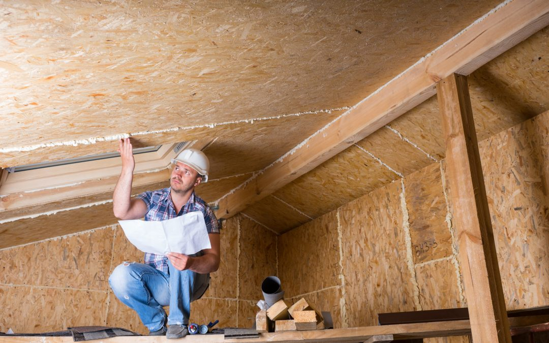 The Truth About the Crawl Space Inspection: Why It's Necessary