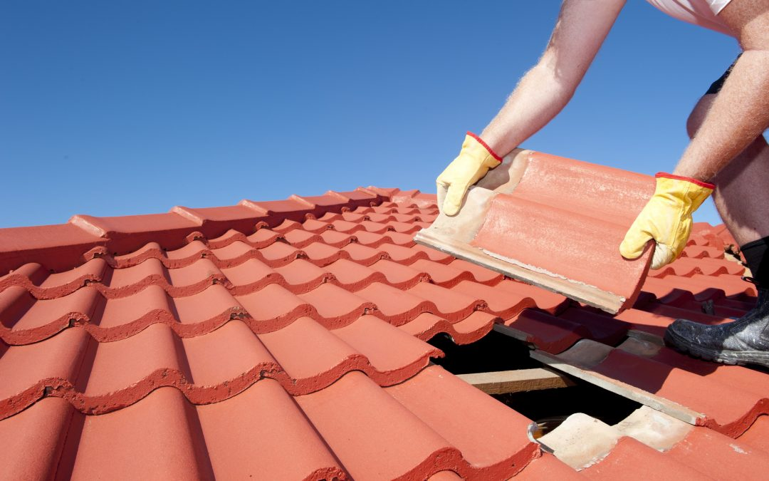 Roof Life: 8 Telltale Signs You Need a New Roof