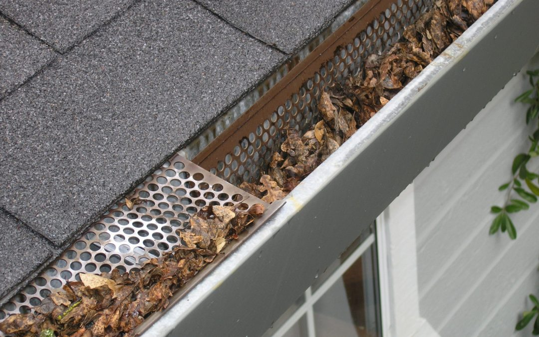 Should You Repair or Replace Gutters?
